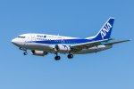 Y-Kenzoさんが、成田国際空港で撮影したANAウイングス 737-54Kの航空フォト(写真)
