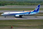 Tomo-Papaさんが、新千歳空港で撮影した全日空 737-881の航空フォト(写真)