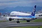 Go-aroundさんが、伊丹空港で撮影した全日空 787-8 Dreamlinerの航空フォト(写真)