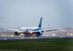 Cygnus00さんが、新千歳空港で撮影した全日空 787-8 Dreamlinerの航空フォト(写真)