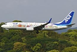 あしゅーさんが、福岡空港で撮影した全日空 737-881の航空フォト(写真)
