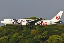 あしゅーさんが、福岡空港で撮影した日本航空 767-346/ERの航空フォト(写真)