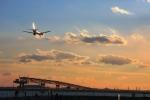 Hiro-hiroさんが、羽田空港で撮影したJALエクスプレス 737-846の航空フォト(写真)