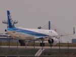 なまくら はげるさんが、羽田空港で撮影した全日空 A321-272Nの航空フォト(写真)