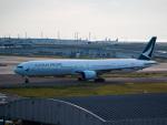 名無しの権兵衛さんが、関西国際空港で撮影したキャセイパシフィック航空 777-31Hの航空フォト(写真)