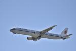we love kixさんが、関西国際空港で撮影した中国国際航空 A321-213の航空フォト(写真)