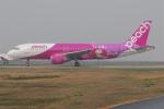 ITM58さんが、福岡空港で撮影したピーチ A320-214の航空フォト(写真)