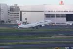 AntonioKさんが、羽田空港で撮影した日本航空 767-346/ERの航空フォト(飛行機 写真・画像)