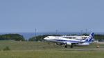 パンダさんが、紋別空港で撮影した全日空 737-8ALの航空フォト(飛行機 写真・画像)