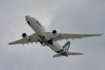 飛行機ゆうちゃんさんが、成田国際空港で撮影したアリタリア航空 A330-202の航空フォト(写真)