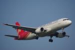 JA8037さんが、台湾桃園国際空港で撮影した深圳航空 A320-214の航空フォト(写真)