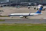 鈴鹿@風さんが、羽田空港で撮影した中国南方航空 737-81Bの航空フォト(写真)