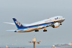 鈴鹿@風さんが、羽田空港で撮影した全日空 787-8 Dreamlinerの航空フォト(写真)