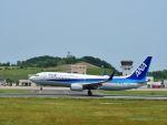 ナナオさんが、石見空港で撮影した全日空 737-881の航空フォト(写真)