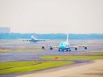 らんうぇい✈︎さんが、成田国際空港で撮影した全日空 A380-841の航空フォト(写真)
