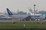 木人さんが、成田国際空港で撮影した全日空 777-F81の航空フォト(写真)