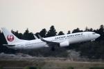 リンリンさんが、成田国際空港で撮影した日本航空 737-846の航空フォト(写真)