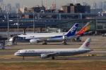 Hiro-hiroさんが、羽田空港で撮影した中国国際航空 A321-213の航空フォト(写真)