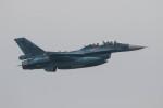 Koenig117さんが、新田原基地で撮影した航空自衛隊 F-2Bの航空フォト(写真)
