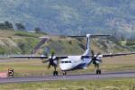 パンダさんが、函館空港で撮影したANAウイングス DHC-8-402Q Dash 8の航空フォト(飛行機 写真・画像)