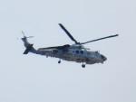 tetuさんが、札幌飛行場で撮影した海上自衛隊 SH-60Kの航空フォト(写真)