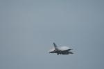 たにやん99さんが、防府北基地で撮影したアメリカ空軍 F-16CM-50-CF Fighting Falconの航空フォト(写真)