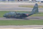 みるぽんたさんが、福岡空港で撮影した航空自衛隊 C-130H Herculesの航空フォト(写真)