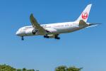 Y-Kenzoさんが、成田国際空港で撮影した日本航空 787-8 Dreamlinerの航空フォト(写真)
