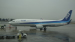 AE31Xさんが、熊本空港で撮影した全日空 737-881の航空フォト(写真)