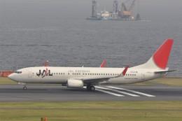 kumagorouさんが、羽田空港で撮影したJALエクスプレス 737-846の航空フォト(写真)