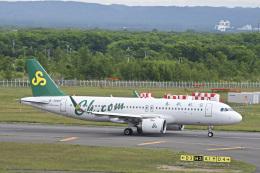 パンダさんが、新千歳空港で撮影した春秋航空 A320-251Nの航空フォト(飛行機 写真・画像)