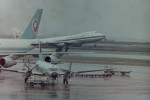 ヒロリンさんが、羽田空港で撮影した全日空 YS-11A-500Rの航空フォト(写真)