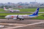 M.Ochiaiさんが、宮崎空港で撮影した全日空 737-881の航空フォト(写真)