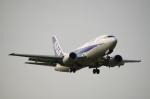zibaさんが、福岡空港で撮影したANAウイングス 737-54Kの航空フォト(写真)