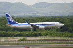 パンダさんが、新千歳空港で撮影した全日空 737-881の航空フォト(写真)