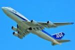 ちっとろむさんが、成田国際空港で撮影した全日空 747-481の航空フォト(飛行機 写真・画像)