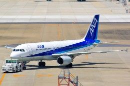 ちっとろむさんが、成田国際空港で撮影した全日空 A320-214の航空フォト(飛行機 写真・画像)