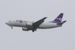 ladyinredさんが、成田国際空港で撮影したYTOカーゴ・エアラインズ 737-36Q(SF)の航空フォト(飛行機 写真・画像)