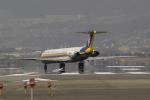 fukucyanさんが、伊丹空港で撮影した日本エアシステム MD-81 (DC-9-81)の航空フォト(写真)