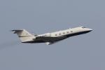 たまさんが、羽田空港で撮影したK2 INVESTMENT FUND LLC G-1159A Gulfstream IIIの航空フォト(写真)