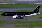 いおりさんが、羽田空港で撮影したスターフライヤー A320-214の航空フォト(写真)