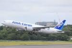 cassiopeiaさんが、成田国際空港で撮影した全日空 777-F81の航空フォト(写真)