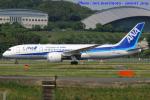 いおりさんが、福岡空港で撮影した全日空 787-8 Dreamlinerの航空フォト(写真)