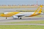 Wings Flapさんが、伊丹空港で撮影したスクート A320-232の航空フォト(写真)