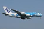 きんめいさんが、関西国際空港で撮影した全日空 A380-841の航空フォト(写真)