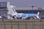 リンリンさんが、成田国際空港で撮影した全日空 A380-841の航空フォト(写真)