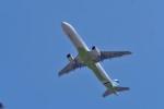 リンリンさんが、成田国際空港で撮影したエアプサン A321-231の航空フォト(写真)