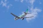 リンリンさんが、成田国際空港で撮影したアリタリア航空 A330-202の航空フォト(写真)