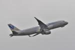 リンリンさんが、成田国際空港で撮影したバニラエア A320-214の航空フォト(写真)