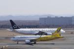 リンリンさんが、新千歳空港で撮影したバニラエア A320-214の航空フォト(写真)